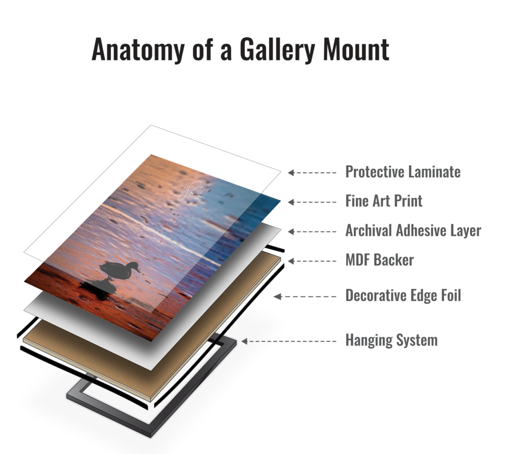 Exploded view of a Gallery mounted print