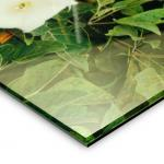Gallery Clear - Face Mount to Optical Acrylic Plex
