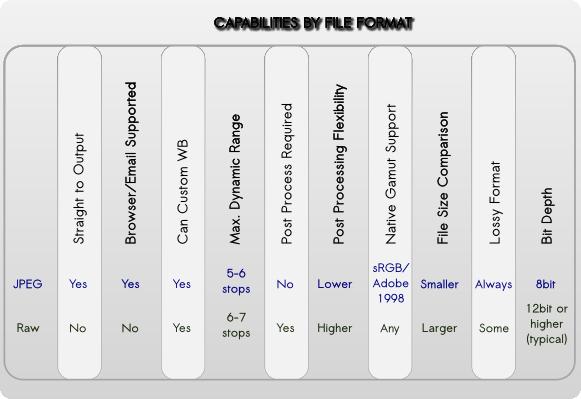 Jpeg Versus Raw, Capabilities by File Format Type