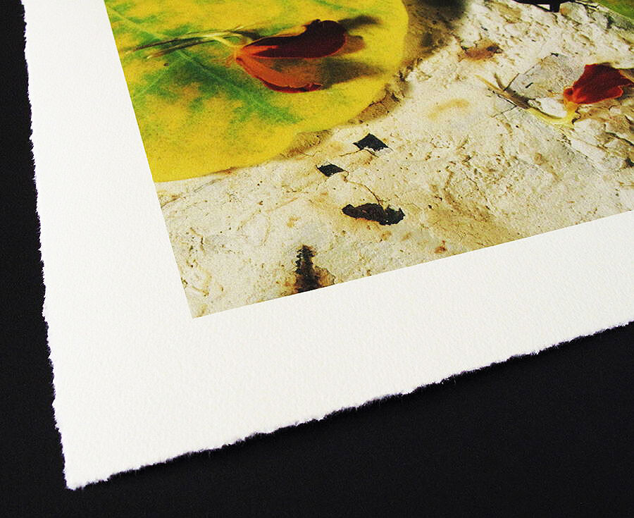 edge of a photo printed on canvas